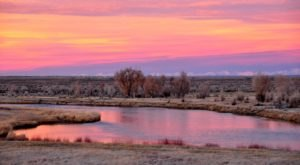 Visit The Magnificent Wildlife Refuge In Wyoming That's Home To More Than 220 Types Of Bird