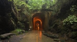 This Amazing Hiking Trail In Georgia Takes You Through An Abandoned Train Tunnel