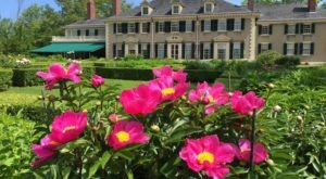 Enjoy Thousands Of Fragrant Blooms At This Springtime Peony Festival In Vermont