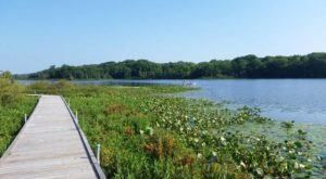 Greater Cleveland's Most Refreshing Hike Will Lead You Straight To A Beautiful Swimming Hole