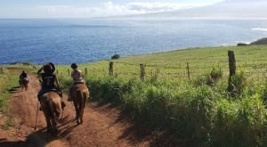 Experience Hawaii's Breathtaking Rolling Hills At This Off-The-Beaten-Path Ranch