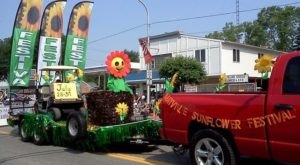 This Upcoming Sunflower Festival In Michigan Will Make Your Summer Complete