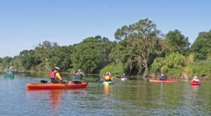 This Paddle Tour Through A Northern California Wildlife Refuge Is Pure Bliss