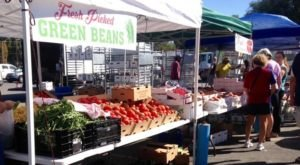 Utah's Oldest Farmers Market Is Located In The Most Beautiful Park In The State