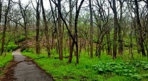 The Kansas Nature Park That Will Bring Back Your Love Of The Outdoors