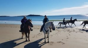 Ride Off Into The Sunset On This Guided Horseback Adventure In Maine