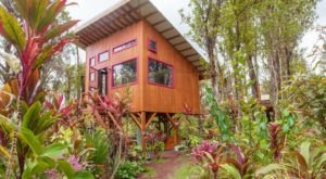 Step Into An Enchanting Wonderland At This Marvelous Hawaii Treehouse