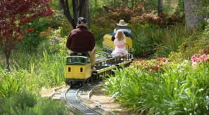 8 Tiny Trains In Southern California That Are Big On Fun