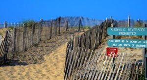 One Of The Most Remote Beaches In Delaware Is Also The Most Magnificent