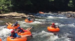 The Longest Float Trip Near Pittsburgh Will Bring Your Summer Tubing Dreams To Life