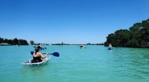 Explore This Florida Bay Like Never Before In A Glass-Bottom Kayak