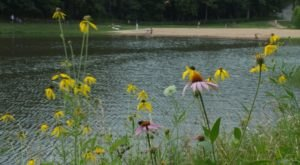 The Cleanest Lake In Missouri Is Ideal For Your Next Summer Dip