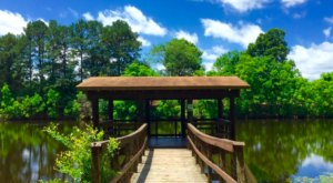 The One Park In Louisiana With A Hammock Village, Swinging Bridges, Fishing Ponds, And Trails Truly Has It All