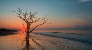One Of The Most Remote Beaches In South Carolina Is Also The Most Magnificent