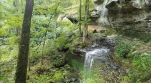 Your Kids Will Love This Easy 1.5-Mile Waterfall Hike Right Here In Illinois