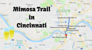Rise And Shine With This Memorable Mimosa Trail In Cincinnati