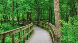 The Easy Hiking Trail In Kentucky That Makes The State's Natural Beauty Accessible To Everyone