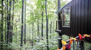 Get Away From It All At This Lush Treehouse Right Outside of Nashville