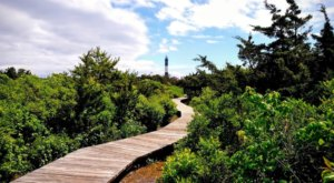 The Lighthouse Walk In New York That Offers Unforgettable Views