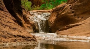 Utah's Most Refreshing Hike Will Lead You Straight To A Beautiful Swimming Hole