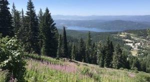 Enjoy Views Of 6 Of Montana's Best Natural Wonders On This One Adventurous Hike