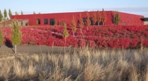 This Enchanting Washington Winery Looks Like An Art Gallery