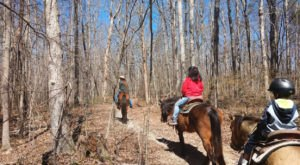 This Dude Ranch Offers The Best Horseback Riding In All Of Alabama