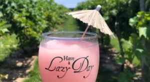 The Frozen Wine Slushies From This Maryland Vineyard Are A Delicious Summer Treat
