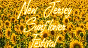 This Upcoming Sunflower Festival In New Jersey Will Make Your Summer Complete