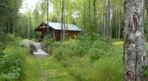 The Tiny Cabin In The Alaskan Woods That Gets More Charming Year After Year