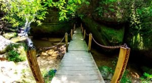 7 Summer Hikes In Alabama That Will Bring Out The Adventurer In You