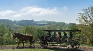 Take A Carriage Ride Through The Mountains For A Truly Unique North Carolina Experience