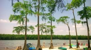 The Little Known Lake Beach In Mississippi That'll Be Your New Favorite Destination