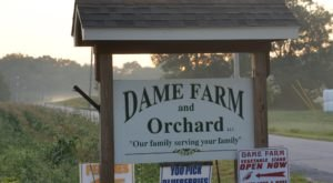 You Can Pick The Most Delicious Fruits All Summer Long At This Rhode Island Orchard
