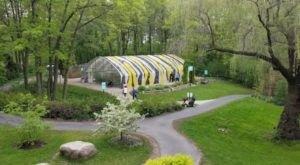Visit Wisconsin's Summer Butterfly Exhibit For A Truly Magical Experience