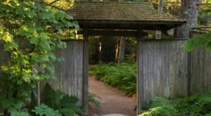 Few People Know There's A Peaceful Japanese Tea Garden Hiding Right Here In Maine