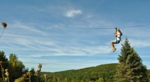 Zip Your Way Through A Breathtaking Forest On This Unforgettable Massachusetts Canopy Tour