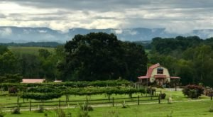 Visit This Tennessee Winery Soon For Some Of Most Spectacular Views In The State