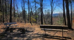 Take An Unforgettable Hike To The Top Of Louisiana's Highest Mountain