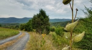 It Doesn't Get Much Better Than This Peaceful Mountain Drive Located Inside A Virginia State Park