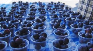 You Can Eat Endless Blueberries At This Juicy Summer Festival In Vermont