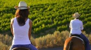 Taste Wine On Horseback On This One-Of-A-Kind Washington Trail