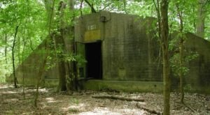 The Forest Trail Near New Orleans That Holds A Long Forgotten Secret Of WWII