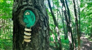 New York's Newest Fairy Trail Will Take You On An Enchanting Outdoor Adventure