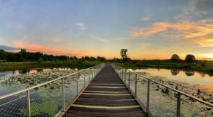 The Boardwalk Hike In Kentucky That Leads To Incredibly Scenic Views