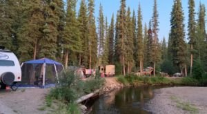 Experience Alaskan Wilderness At This Campground On A Burbling Creek