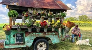 The Traveling Flower Truck In Kentucky You'll Be Delighted To Track Down