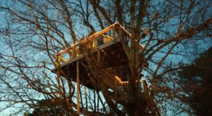 This Date Night Treehouse At A North Carolina Winery Is The Perfect Spot To Relax And Unwind