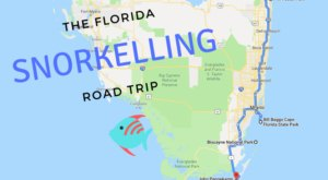 Take This One-Of-A-Kind Snorkeling Road Trip In Florida For The Ultimate Summer