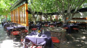Dine Under A Canopy Of Trees At The Most Magical Restaurant In Southern California